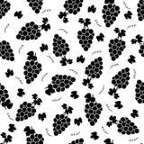 Bezszwowy wzór z czarnymi winogronami na białym tle Zdjęcia Royalty Free