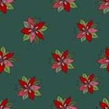 Bezszwowy wzór z czerwoną poinsecją na zielonym tle kwiaty zielona czerwone tło royalty ilustracja