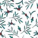 Bezszwowy wzór z czerwonymi jagodami, gałązki i Royalty Ilustracja