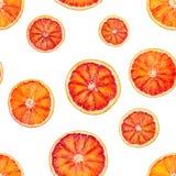 Bezszwowy wzór z czerwonymi krwionośnej pomarańcze pomarańczami zdjęcie royalty free