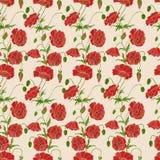 Bezszwowy wzór z czerwonymi maczkami Zdjęcia Stock