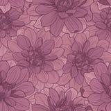 Bezszwowy wzór z dalia kwiatami ornament kwiecisty Zdjęcie Royalty Free