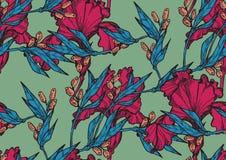 Bezszwowy wzór z dekoracyjnym irysem Obrazy Royalty Free
