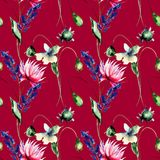 Bezszwowy wzór z Dekoracyjnymi lato kwiatami ilustracja wektor