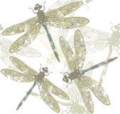 Bezszwowy wzór z dragonfly Zdjęcie Royalty Free