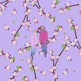 Bezszwowy wzór z dwa colourful papugą royalty ilustracja