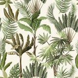 Bezszwowy wzór z egzotycznymi drzewami taki my palma i banan Wewnętrzna rocznik tapeta ilustracja wektor