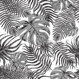 Bezszwowy wzór z egzotycznymi liśćmi Obrazy Royalty Free