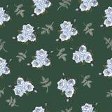 Bezszwowy wzór z eleganckimi błękitnymi różami Obrazy Royalty Free