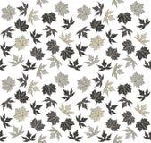 Bezszwowy wzór z eleganckimi jesień liśćmi Obrazy Stock