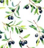 Bezszwowy wzór z gałązkami oliwnymi Ręka rysująca akwareli ilustracja Obrazy Royalty Free