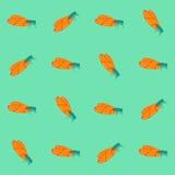 Bezszwowy wzór z insektami Cykada powtarzająca ilustracja wektor