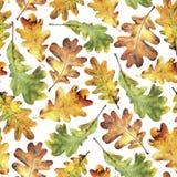 Bezszwowy wzór z jesień żółtymi liśćmi dąb Ręka rysująca ilustracja z barwionymi ołówkami zdjęcie stock