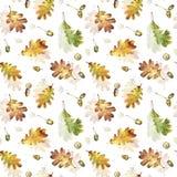 Bezszwowy wzór z jesień liśćmi dąb i acorns Ręka rysująca ilustracja z barwionymi ołówkami obrazy stock