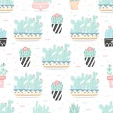 Bezszwowy wzór z kaktusami i sukulentami fotografia stock