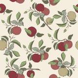Bezszwowy wzór z kolor jabłczaną owoc i liście kreślimy Obraz Stock