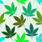 Bezszwowy wzór z kolorową marihuaną opuszcza w deszczu royalty ilustracja