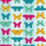 Bezszwowy wzór z kolorowymi motylami royalty ilustracja