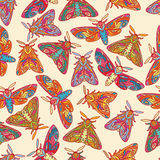 Bezszwowy wzór z kolorowymi motylami lub ćma Fotografia Royalty Free