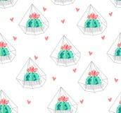 Bezszwowy wzór z koloru kaktusem w terrarium i sercami na białym tle Ornament dla tkaniny i opakowania wektor Fotografia Stock