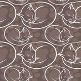 Bezszwowy wzór z kotami royalty ilustracja