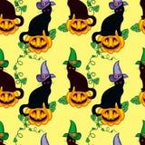 Bezszwowy wzór z kotem w czarownica kapeluszu ilustracji
