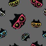 Bezszwowy wzór z kotem w modnisiów szkłach Zdjęcia Stock