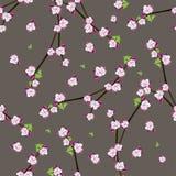 Bezszwowy wzór z kwitnącymi jabłczanymi gałązkami ilustracja wektor