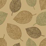 Bezszwowy wzór z liśćmi Obraz Royalty Free