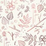 Bezszwowy wzór z liśćmi, gałąź, jagody, garbki, ziarna Fotografia Stock