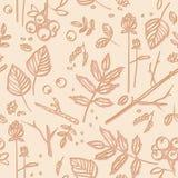 Bezszwowy wzór z liśćmi, gałązki, jagody Fotografia Stock