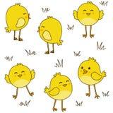 Bezszwowy wzór z ślicznymi kurczakami Zdjęcia Stock