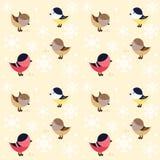 Bezszwowy wzór z małymi śmiesznymi ptakami Zdjęcia Royalty Free