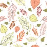 Bezszwowy wzór z menchiami, pomarańcze, zieleni leves i gałąź na białym tle, i royalty ilustracja
