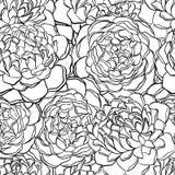 Bezszwowy wzór z monochromem, czarny i biały kwiaty Zdjęcie Royalty Free