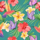 Bezszwowy wzór z motylami, hummingbirds i tropikalnymi roślinami, ilustracji
