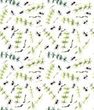 Bezszwowy wzór z mrówkami i horsetail Guasz ręka rysująca ilustracja royalty ilustracja