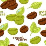 Bezszwowy wzór z organicznie kawowymi fasolami Obraz Stock