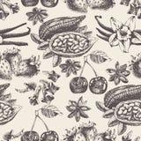 Bezszwowy wzór z owoc, pikantność w roczniku projektuje Obraz Stock