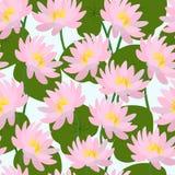 Bezszwowy wzór z pączkami i liśćmi różowi lotosy wektor ilustracji