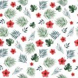 Bezszwowy wzór z palmą opuszcza, monstera opuszcza i czerwony poślubnik kwitnie na białym tle beak dekoracyjnego lataj?cego ilust ilustracja wektor