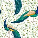 Bezszwowy wzór z pawiem, kwiatami i liśćmi, ilustracji