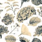 Bezszwowy wzór z piękną wiosną kwitnie i rośliny Fotografia Stock