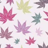 Liścia klonowy bezszwowy wzór Fotografia Stock
