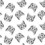 Bezszwowy wzór z pociągany ręcznie kotem Obraz Royalty Free