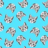 Bezszwowy wzór z pociągany ręcznie kotem Zdjęcia Stock