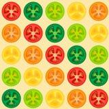 Bezszwowy wzór z pomidorowym plasterkiem Fotografia Stock