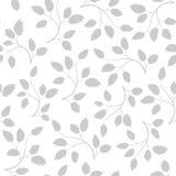 Bezszwowy wzór z popielatymi liśćmi Obrazy Stock