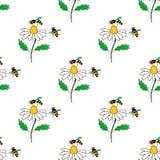 Bezszwowy wzór z pszczołą - 4 Zdjęcia Stock