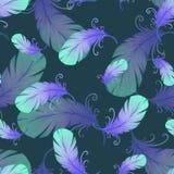 Bezszwowy wzór z ptasimi piórkami Obrazy Stock